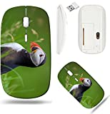 Liili Wireless Mouse White Base Travel 2.4G Wireless Mice with USB Receiver, Click with 1000 DPI for notebook, pc, laptop, computer, mac book Atlantic Puffin standing in grass Iceland Photo 20479446