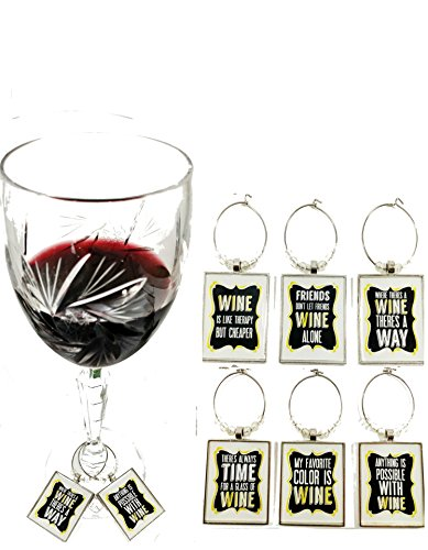 Inspirational Wine Glass Charms | Set of 6 Drink Markers with Fun & Motivational Words/Quotes, Wine Theme Drink Accessories for Men, Women, Great Gift by GoodVibez
