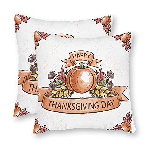 DKISEE Thanksgiving Day Pumpkin Pillow Covers Autumn/Fall Decor Covers Give Thanks Sofa Decorative Square Accent Pillow Cases Set of 2