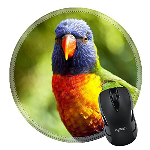 MSD Natural Rubber Mousepad Round Mouse Pad/Mat: 5463169 An Australian Rainbow Lorikeet shot in close up on - Australia Locations In