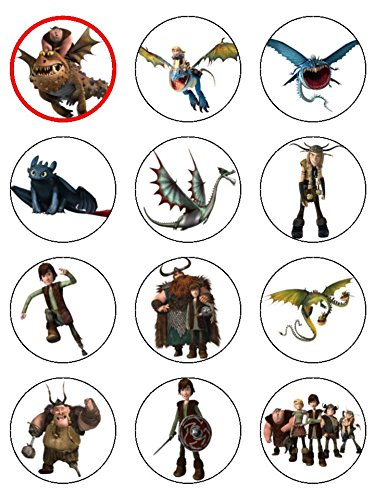 12 x 21 inch how to train your dragon edible icing birthday cup 12 x 21 inch how to train your dragon edible icing birthday cup cake toppers ccuart Gallery