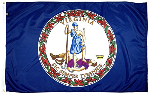 FlagSource Virginia Nylon State Flag, Made in The USA, 3x5'
