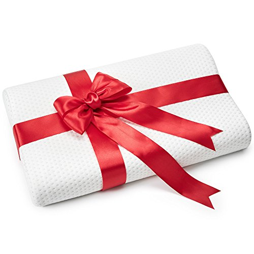 AVESTON Small Memory Foam Pillow – Travel Size Contour Pillow for Back and Side Sleepers - Ergonomic Cervical Pillow 19,5 x 11 x 3,5 inch with Extra Pillow Case Dressed with Love in a Red Bow