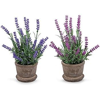 Set Of 2 Louis Garden Artificial Mini Potted Plants Home Decoration  (Lavender)