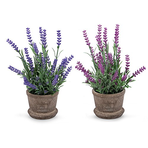 Set of 2 Louis Garden Artificial Plastic Mini Potted Plants Home Decoration (Lavender)