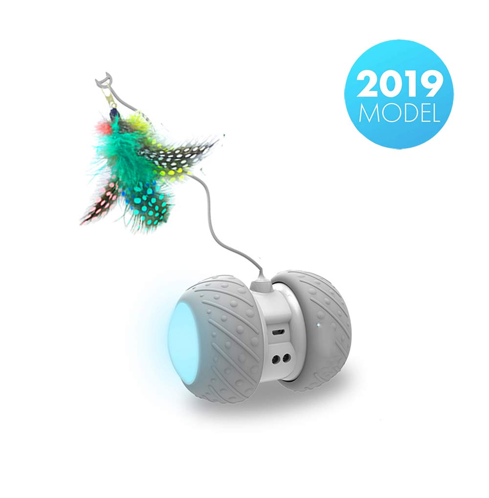 PetDroid Boltz Robotic Cat Toy Interactive,Attached with Feathers/Birds/Mouse Toys for Cats/Kitten,Large Capacity Battery/All Floors Available (Grey) by PetDroid