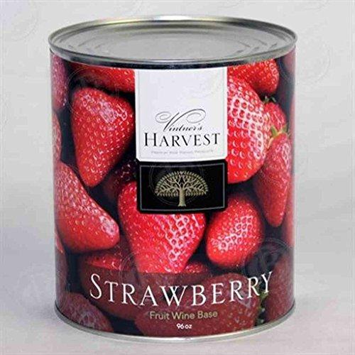 Vintners Harvest Strawberry Fruit Wine Base 96 Oz (Vintners Harvest Fruit Wine Base)
