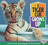 img - for A Tiger Cub Grows Up (Baby Animals) book / textbook / text book