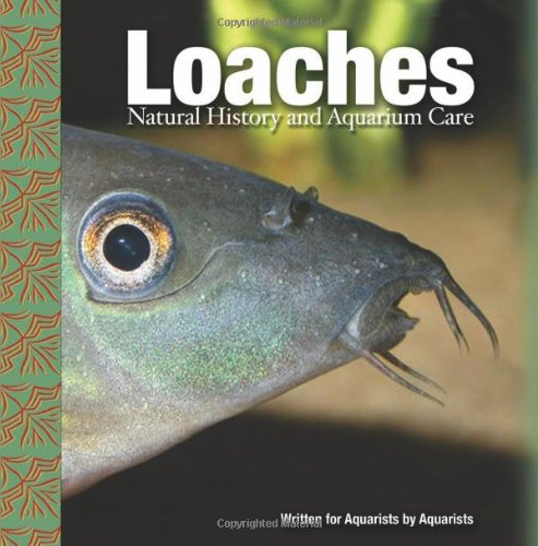 Loaches: Natural History and Aquarium Care by Brand: TFH Publications