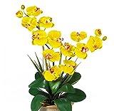 SKB Family Double Stem Phalaenopsis Silk Orchid Arrangement gorgeous ceramic vase expertly decor gift
