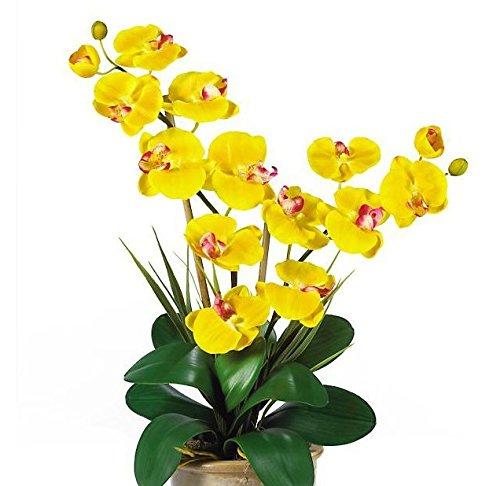 SKB Family Double Stem Phalaenopsis Silk Orchid Arrangement gorgeous ceramic vase expertly decor gift by SKB family