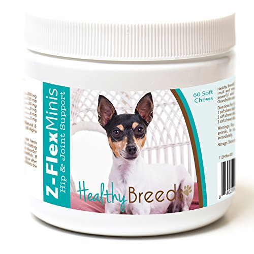 Healthy Breeds Z Flex Minis Dog Hip & Joint Supplement Soft Chews for Toy Fox Terrier - Over 100 Breeds - Small Breed Formula - Glucosamine Chondroitin MSM Omega - 60 Count