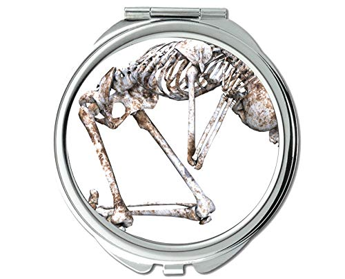 - Mirror,Round Mirror,Bones 3d isolated,pocket mirror,1 X 16X Magnifying