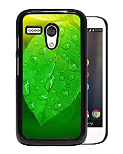New Beautiful Custom Designed Cover Case For Motorola Moto G With Nature Vitaliy Green Leaf Macro Phone Case