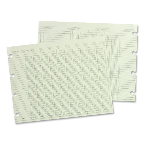 Wilson Jones Green Columnar Ruled Ledger Paper, Double Page Format, 16 Columns and 30 Lines per Page, 9.25 x 11.88 Inches, 100 Sheets per Pack (WG10-16A) ()