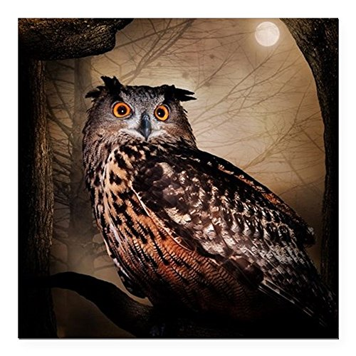CafePress - Halloween Owl Square Car Magnet 3