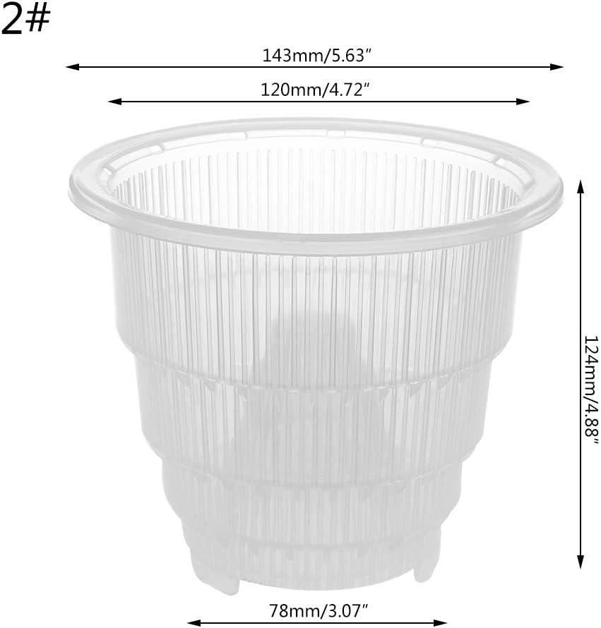 Xuniu Mesh Pot Plastic Clear Orchid Flower Container Maceta Home Gardening Decoración