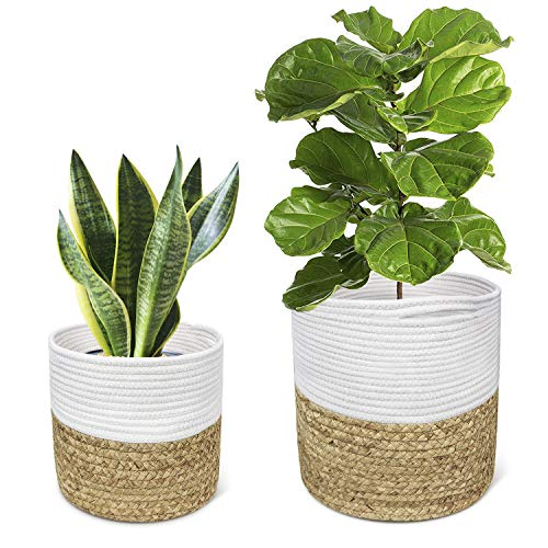 TIMEYARD Plant Basket Indoor Hyacinth Planter Up to 10 Inch, Set of 2 Flower Pot Cover, Woven Cotton Rope Storage Bin Organizer with Handles Modern Farmhouse Home Decor, M-L Size ()