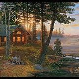 York Wallcoverings Lake Forest Lodge CH7842BD Cabin Fever Border, Multi Black Band: more info