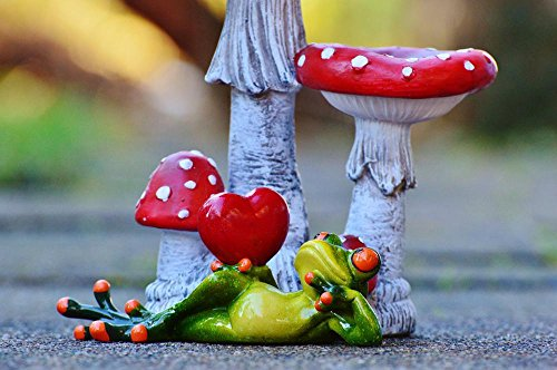 (Quality Prints - Laminated 36x24 Vibrant Durable Photo Poster - Frog Heart Lucky Guy Love Figure Cute Fun Valentine's Day Funny Animal Pose Frogs Deco Decorative Items)