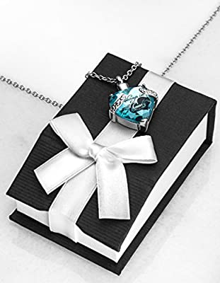 SmartChoice Keepsake Rhinestone Necklace Heart Pendant for Cremation Ashes with Beautiful Presentation Gift Box, Elegant Memorial Jewelry with Stainless Chain and Accessories,