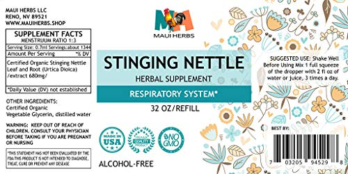 Stinging Nettle Tincture Alcohol-Free Liquid Extract, Organic Stinging Nettle Leaf and Root (Urtica Dioica) (32 FL OZ) by Maui Herbs (Image #1)