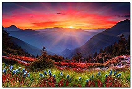 Amazon Com Sunrise Mountains Spring Flowers Nature Art Silk Wall