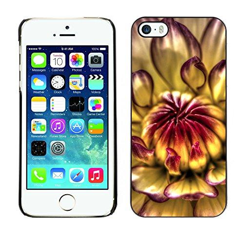 Premio Sottile Slim Cassa Custodia Case Cover Shell // F00007438 une fleur // Apple iPhone 5 5S 5G