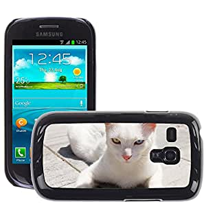Etui Housse Coque de Protection Cover Rigide pour // M00113019 Gato blanco Heterocromía Animal Pet // Samsung Galaxy S3 MINI i8190