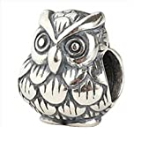 Owl Harry Potter Fan 925 Sterling Silver Bead Fits Pandora Charms
