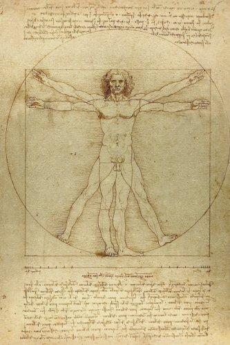 Leonardo da Vinci Notebooks - The Vitruvian Man: 120 Graph Paper / Grid Lines pages - Leonardo da Vinci?s Notebook, Journal, Sketchbook, Diary, Manuscript (The Vitruvian Man)