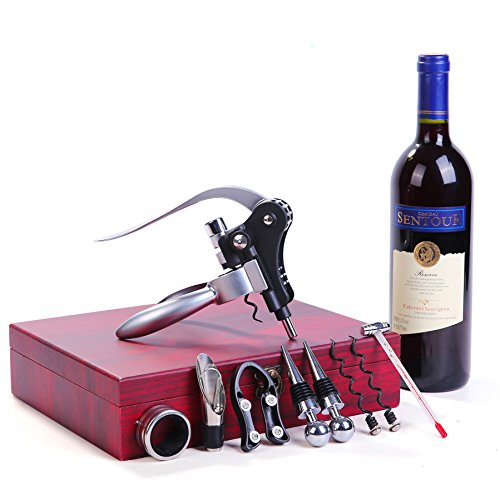 (Wine Opener,SengVan Rabbit Wine Bottle Kit Stainless Steel All-in-One Accessories with Gift Box 9 Pieces (Silver))