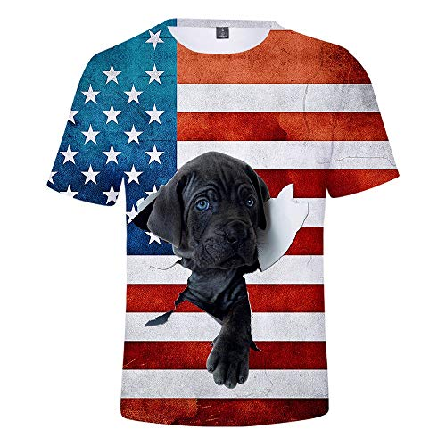 Mens Summer t Shirts Short Sleeve,Tronet Men New USA American Flag Printed Sports Shirts Pure Large Size Blouse Tops ()