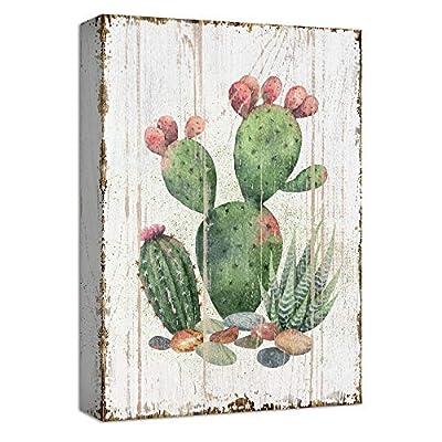 Rustic Fruit Bearing Cactus - Canvas Art