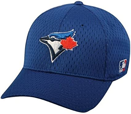 All 30 Teams Official Major League Baseball Hat of Youth Little League and Youth Teams Toronto Blue Jays Youth MLB Licensed Replica Caps