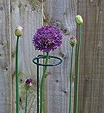 Mr.Garden Round Vegetables Stalk Plant Climbing Support Trellis Flower Vine Support Garden Trellis 17.7''