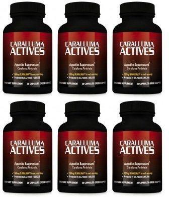 Actives Caralluma - coupe-faim naturel pour perdre du poids et perdre du poids (6 bouteilles)