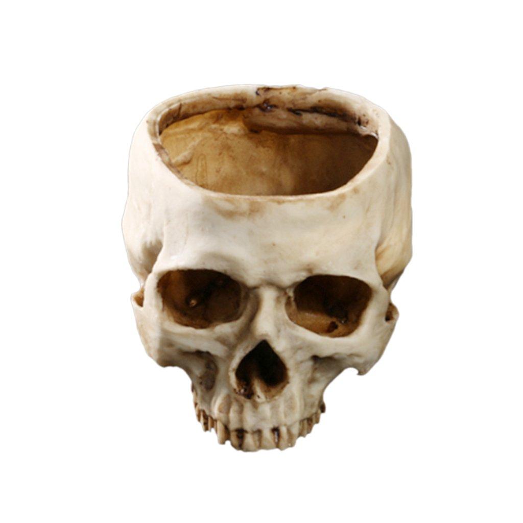 MonkeyJack Creative Human Skull Planter Flower Pot Home Office Plant Decor Flowerpot