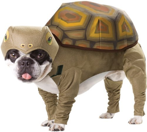 Animal Planet Halloween Dog Pet Costume Tortoise Size:Small (Tortoise Costumes)