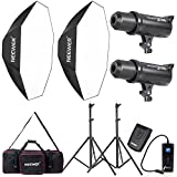 Neewer 600W Photo Studio Monolight Strobe Flash Light and Softbox Lighting Kit with Light Stand, RT-16 Wireless Trigger and Carrying Bag for Video Shooting, Location and Portrait Photography (DS300)