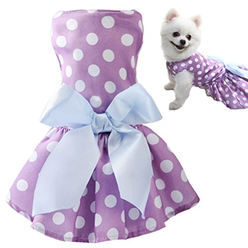 KOOLTAIL Dot Dog Dress for Small Dogs Cute Pet Clothes Dress Purple (Clothes Pet Cute)