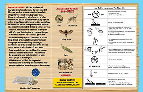 Bug Sales 25 Million Live Beneficial Nematodes Hb & Sf - Kills Over 200 Different Species Soil Dwelling Wood Boring Insects. by Bug Sales (Image #2)