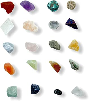 Steinfixx Mineraliensammlung Hochwertig I 20 Teile I Muscheln I Mineralien I Edelsteine I Fossilien