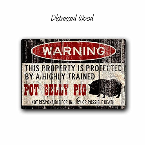 Fhdang Decor Pot Belly Pig Sign,Funny Metal Signs,Pot Bellied Pig,Pot Belly Pig,Pig Warning Sign,Pet Gift,Pig,Small Pet,Pot Belly Pig Gift,SS1_034