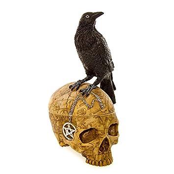 NEM18A Nemesis Now Skull Salem's Familiar with Crow: Amazon ca: Home