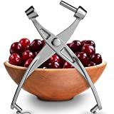 Premium Cherry Pitter Stoner - Olive Pitter Heavy Duty | Quality Finish | Includes Cherry Recipe EBOOK (Silver)