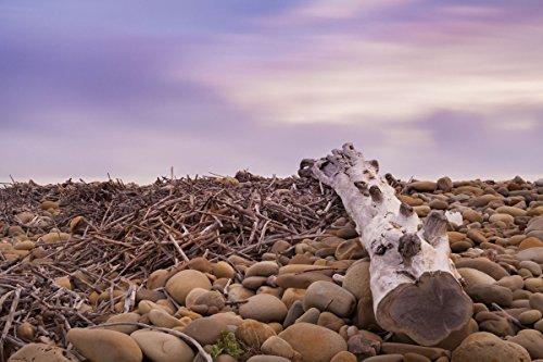 "Frame USA Driftwood View-CHRMOY114524 Print 24""x36"" by Chris"