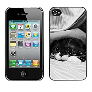 YOYO Slim PC / Aluminium Case Cover Armor Shell Portection //Cute Cat //Apple Iphone 4