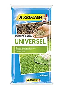 algoflash Semilla.Césped.Univ.10kg semillas césped Universal 10kg, azul, 44x 10x 67cm