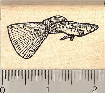 Guppy Fish Rubber Stamp